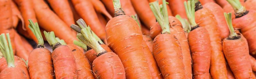 fruit-carrot