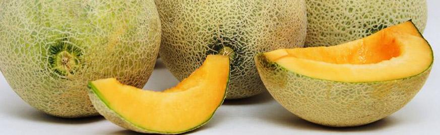 fruit-melons